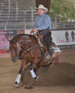 2015 West Coast Reining Horse Assoc. Year End Show