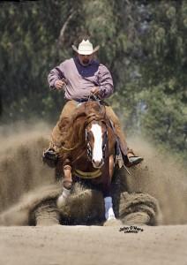 West Coast Reining Horse Assoc. Brookside. Star Spangled Slide July 3-6,2014