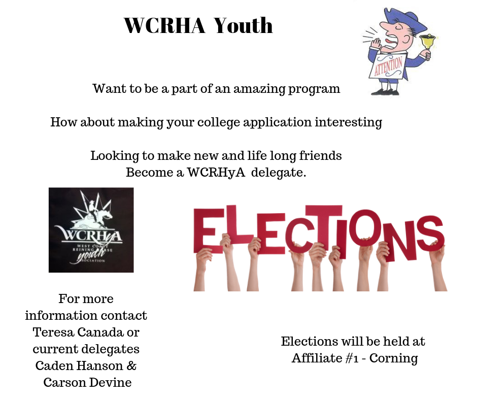 Youth Elections