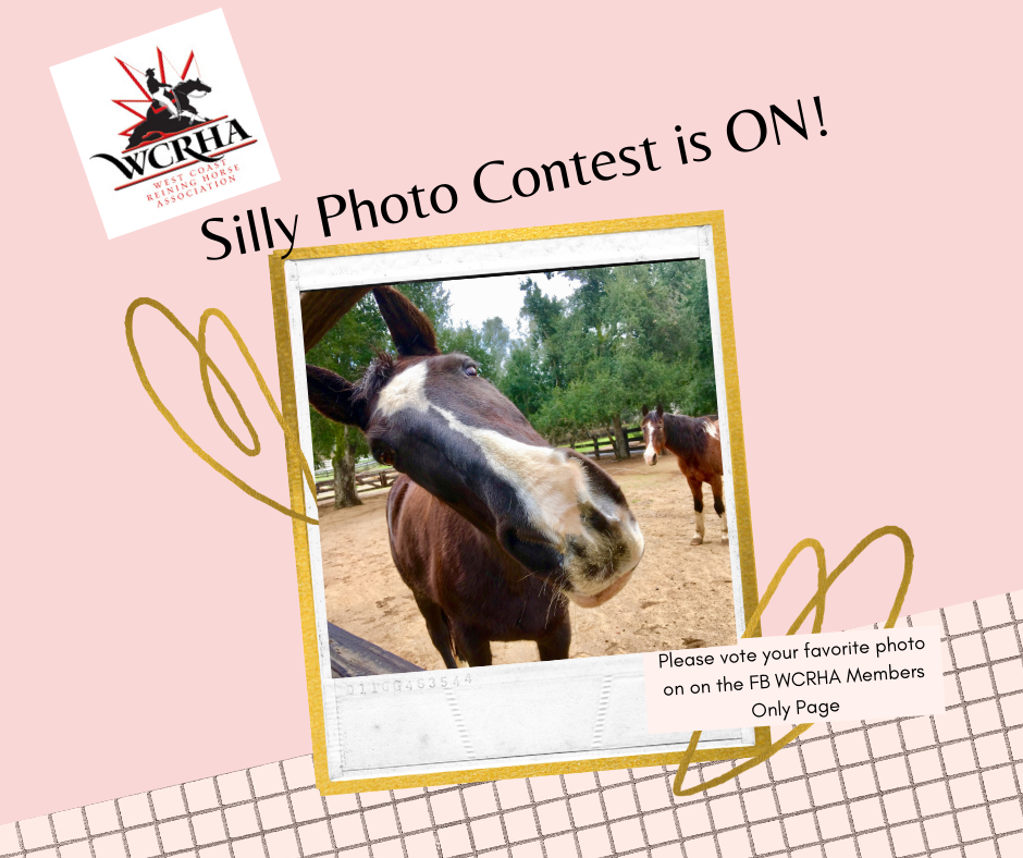 Silly Photo Contest is ON!-1